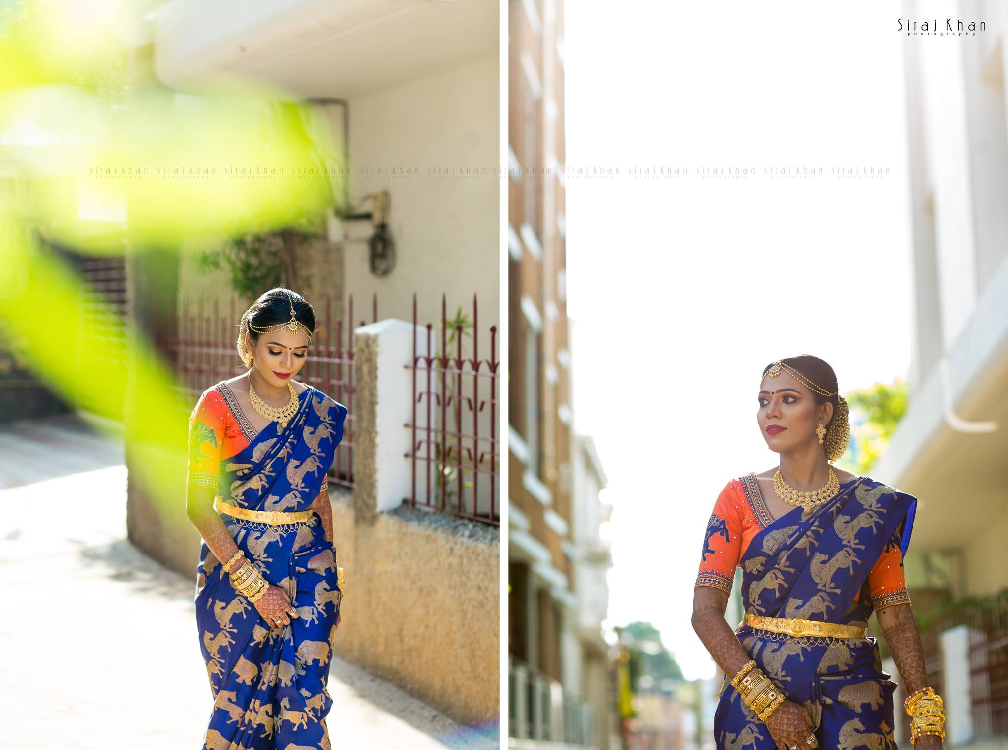 Royal Blue Animal themed silk saree